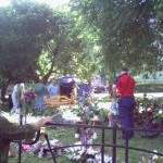 Выставка цветов и плодов, Челябинск, ЧМЗ, 2007 год, фото Елены Шмыгиной, сайт Елены downshifting.today